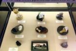 Работы студентов техникума «Рифей» выставлены в Геологическом музее им. В.И. Вернадского